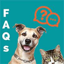 FAQs Aclaraciones